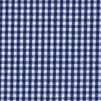 Cotton Lightweight: blue and white gingham